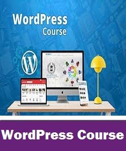 Wordpress learners