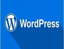learning wordpress learnerscoach