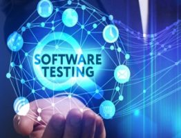 Software Testing Introduction learnerscoach