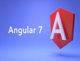 angular Learnerscoach