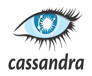 cassandra learnerscoach