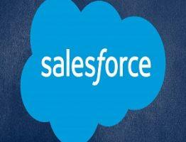 salesforce tutorial learnerscoach