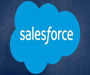salesforce tutorial learnerscoach