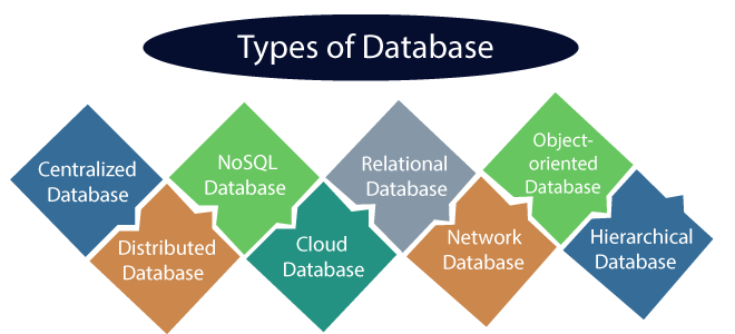 types of databases Learnerscoach