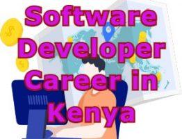software developer Career in Kenya