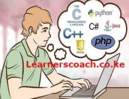 Best programming language to learn in Kenya