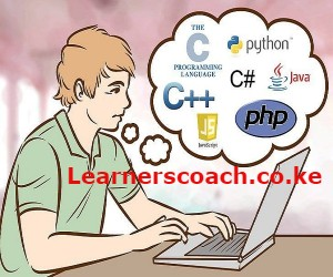 Top 5 Programming Languages To Learn in Kenya Before 2030